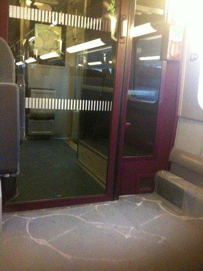 espace pour un fauteuil dans le TGV